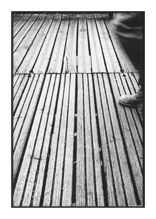 IMG_07_Carole-Lozano