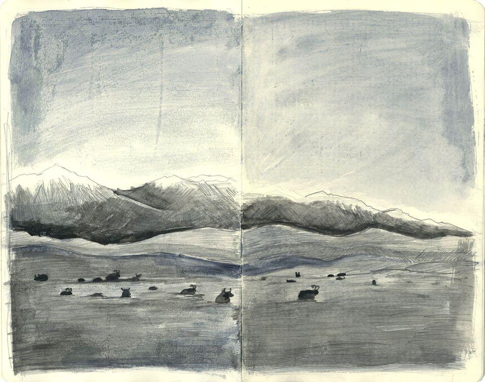 549631-copie-de-kirghise8