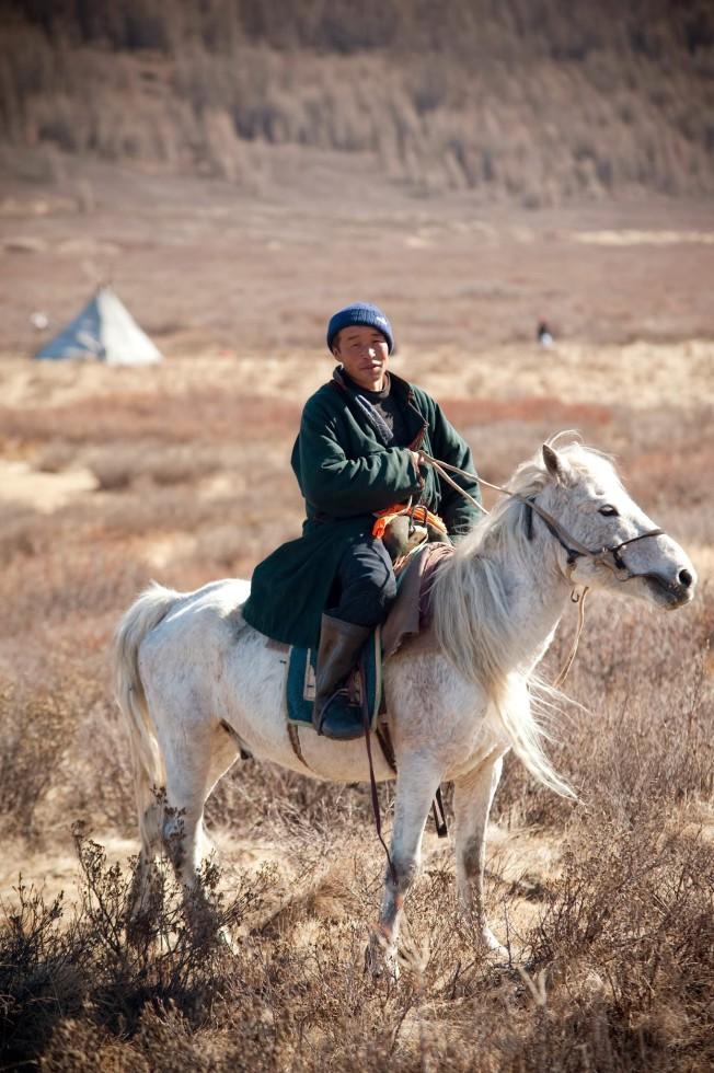 les chevaux de la taiga