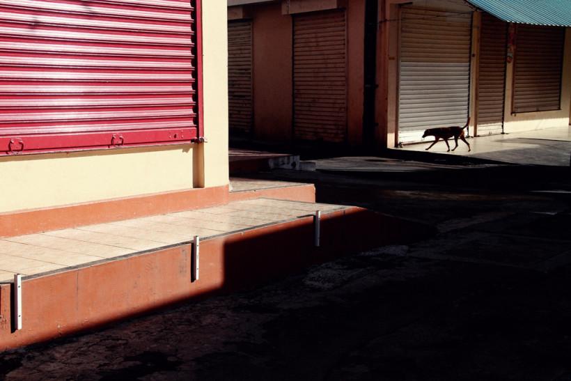 Photo1-AVoldoire